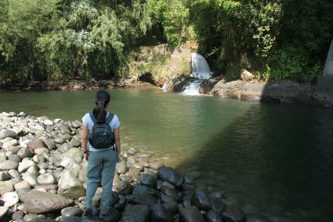 Julie looking across the stream at the tiny Kolekole Falls
