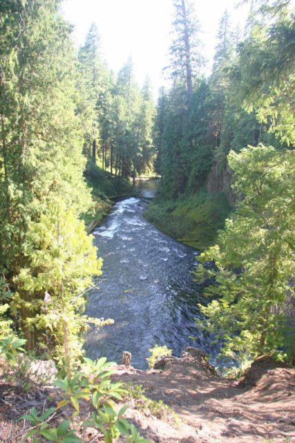 Koosah_Falls_017_08192009 - Looking downstream from near the brink of Koosah Falls