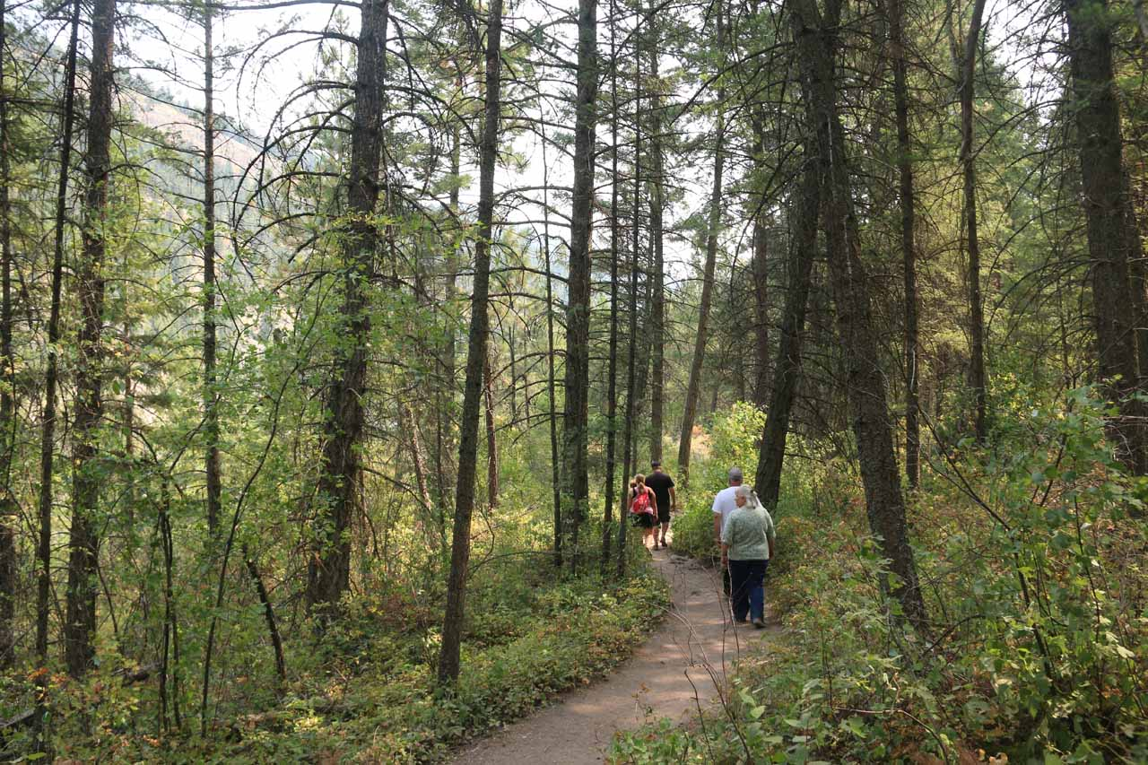 On the well-used trail leading closer to Kootenai Falls