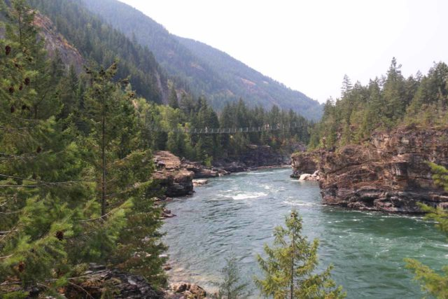 Kootenai_Falls_108_08052017 - Looking downstream towards the Swinging Bridge as I was hiking towards it after having visited the Kootenai Falls