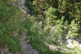 Kuhflucht_Waterfall_104_06272018 - Looking back down towards a steep steps that climbed up from the footbridge over the Kuhfluchtgraben as the trail was now climbing alongside parts of the Kuhflucht Waterfalls