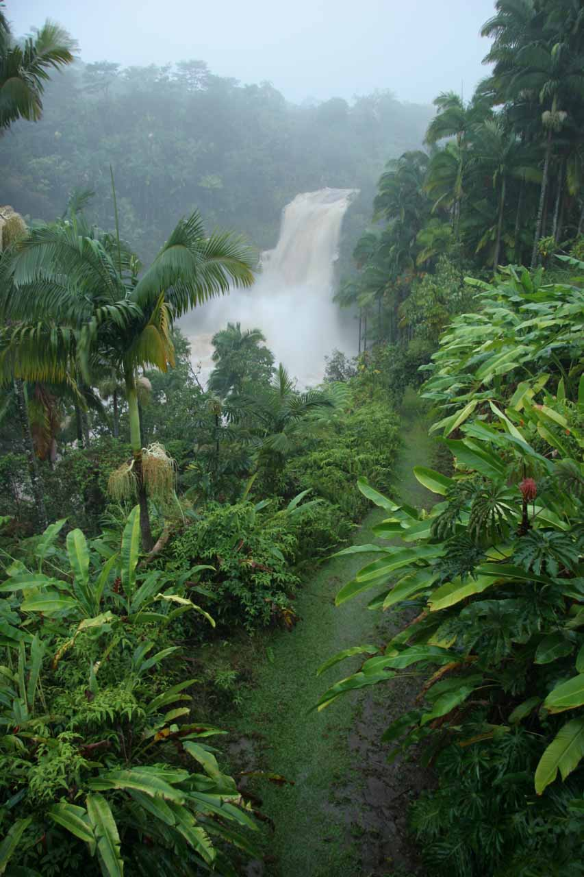 The swollen Kulaniapia Falls