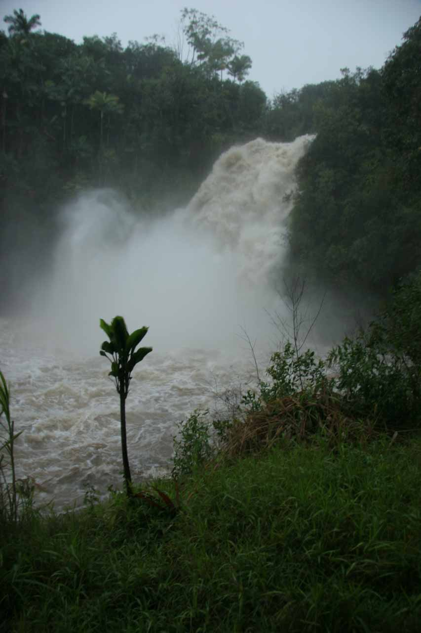 At the base of the swollen Kulaniapia Falls