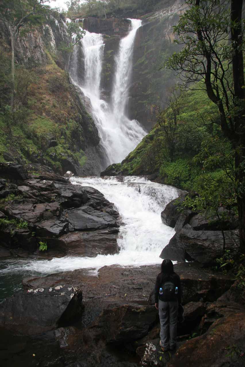 Julie checking out Kundalila Falls