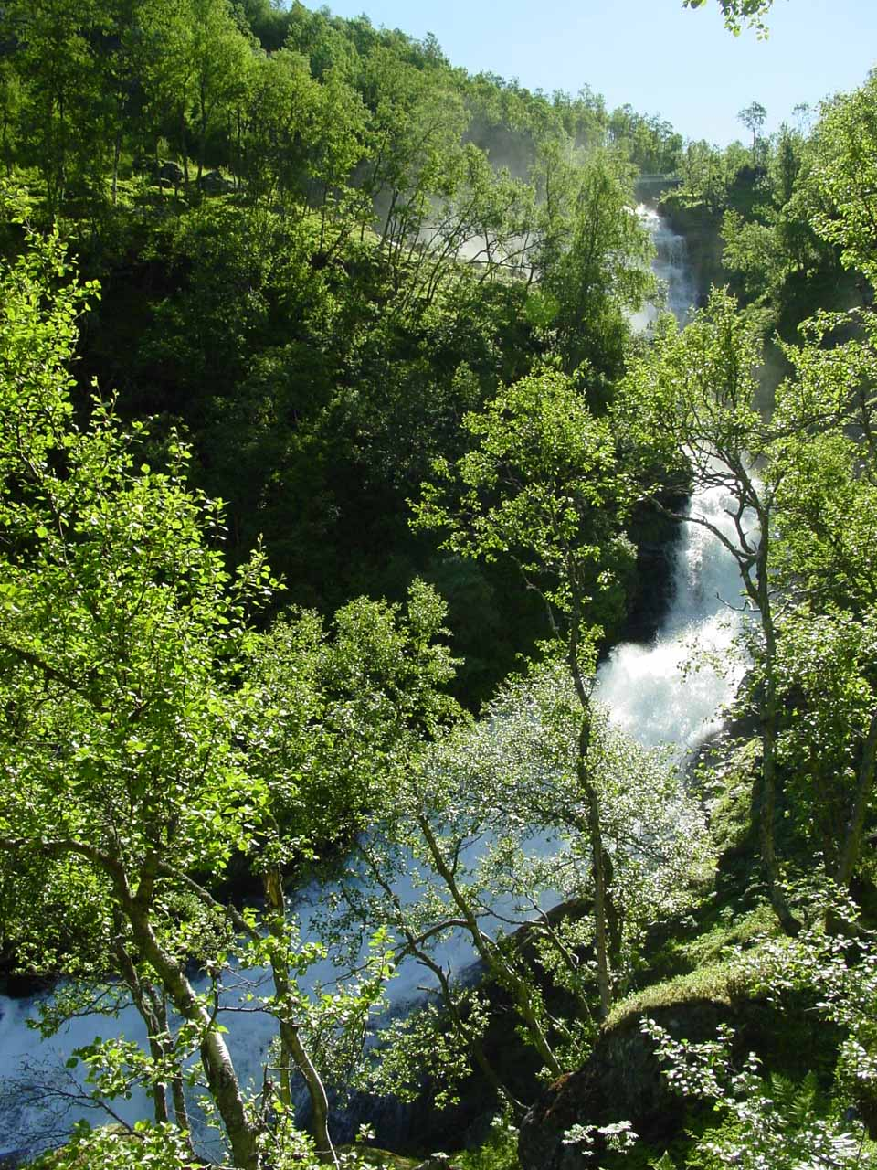 Another view of Kvanndalsfossen, but this time with lots of foliage obstructing line of sight