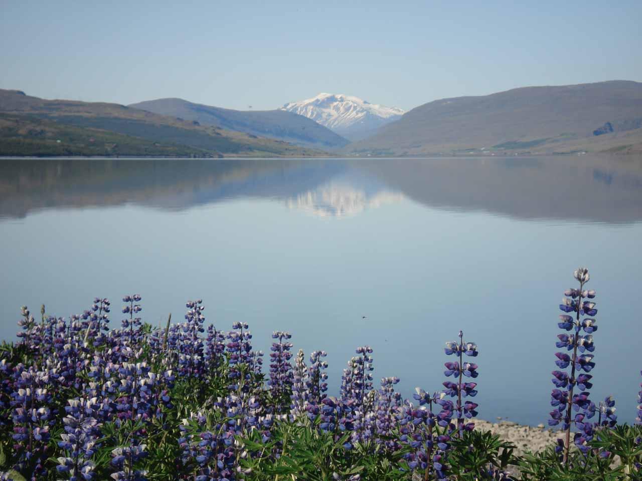 The lake near Egilsstadir