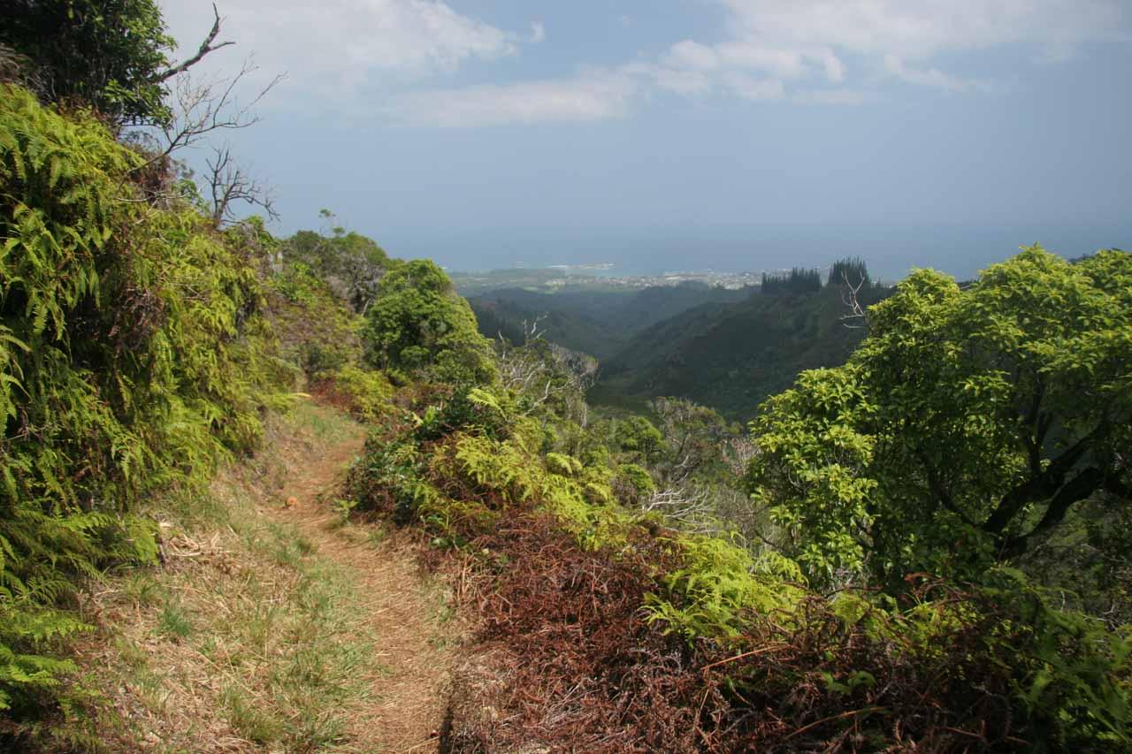 Heading back downhill towards the trailhead