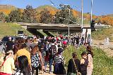 Lake_Elsinore_014_03172019 - It definitely seemed like all of LA showed up to Lake Elsinore to experience the poppy superbloom