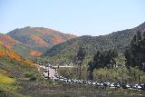 Lake_Elsinore_182_03172019 - Looking along a side road and the I-15 with lines of cars parallel parking as we were walking back along Lake Street