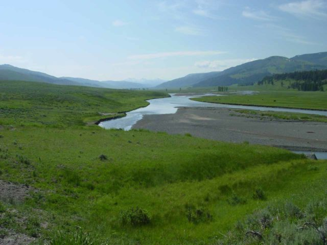 Lamar_Valley_002_06242004