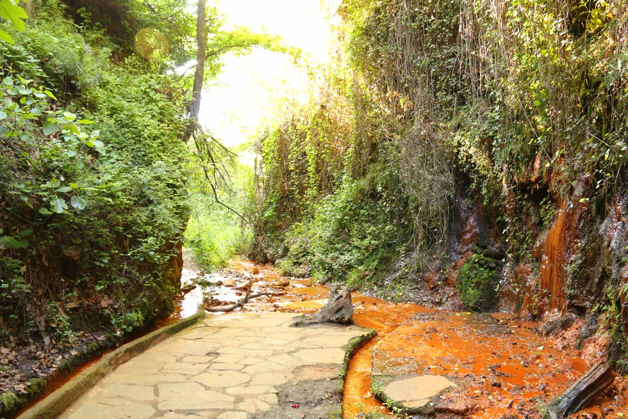 Colorful rocks and stream beds with lush growth all around at the Fuente Agria