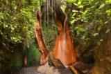 Las_Alpujarras_052_05272015 - The Fuente Agria waterfall