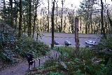 Latourell_Falls_052_04062021 - Looking back at the parking lot. Funny story about this photo was that it was freezing on the morning of my hike (so much so that my hands were going numb), but you can see here that the dude going back to the lot was wearing nothing but a T-shirt and shorts!