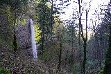 Latourell_Falls_062_04062021 - Looking back at the profile of Latourell Falls from the Upper Latourell Falls Trail