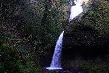 Latourell_Falls_098_04062021 - The closer I got to the Upper Latourell Falls, the less of its upper drop I was able to see