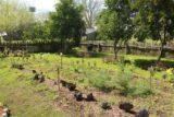 Laura_Plantation_105_03142016