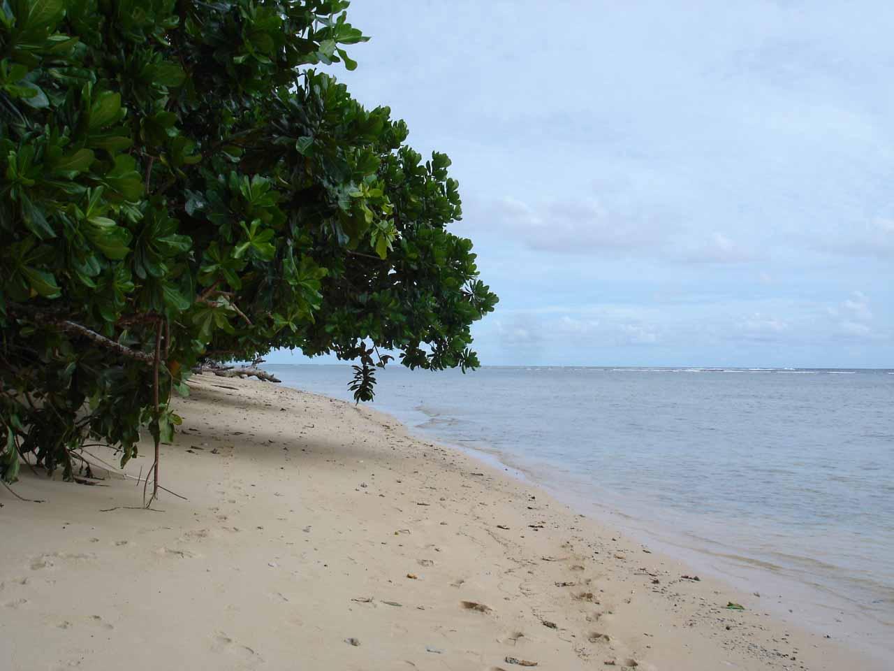 An inviting beach along the coastal walk
