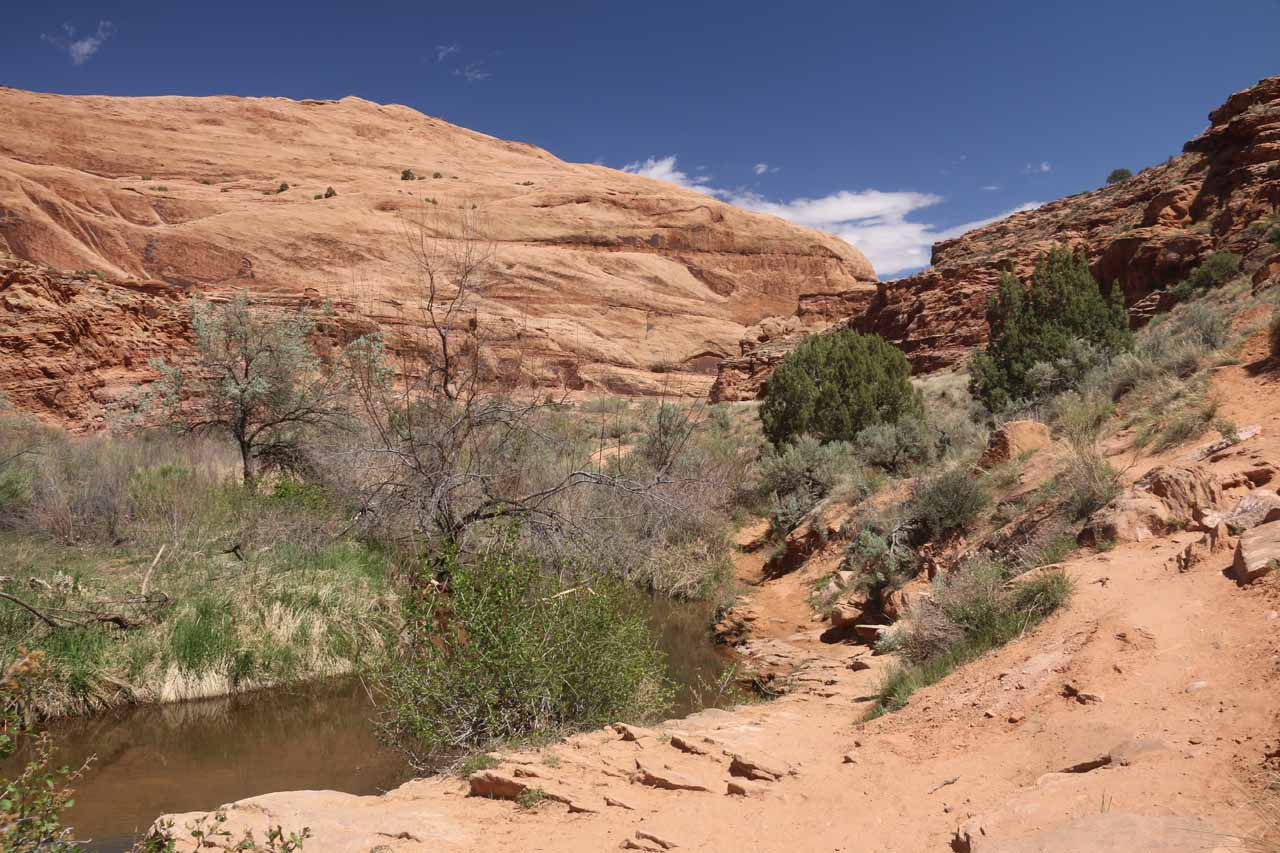 It was mostly dry hiking as the trail followed along Mill Creek in a mostly wide open canyon