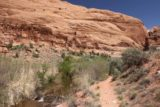 Left_Hand_027_04202017 - Continuing on the scenic trail to Mill Creek Falls in Moab, which refreshingly followed Mill Creek