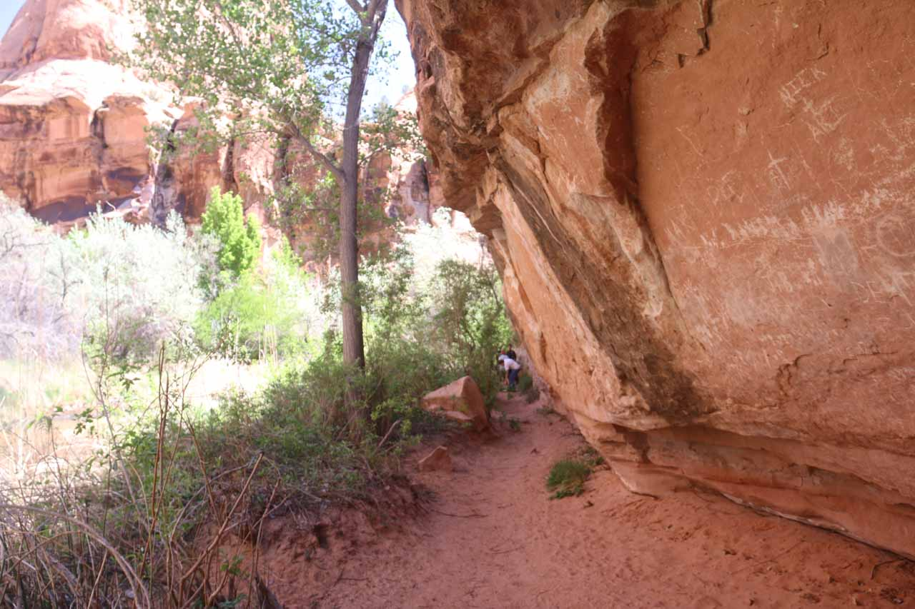 The trail now followed along the base of the cliffs, which provided some welcome shade from the midday sun