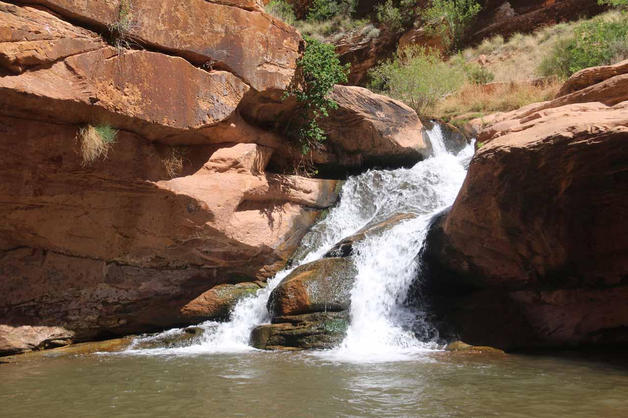 Mill Creek Falls or 'Left Hand'