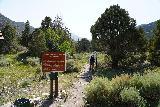 Lehman_Creek_002_06152021 - Starting the Lehman Creek Trail from the Lower Lehman Creek Campground
