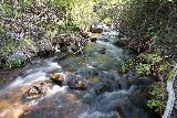 Lehman_Creek_016_06152021 - Looking upstream at some of the smaller cascades comprising the Lehman Creek Cascades