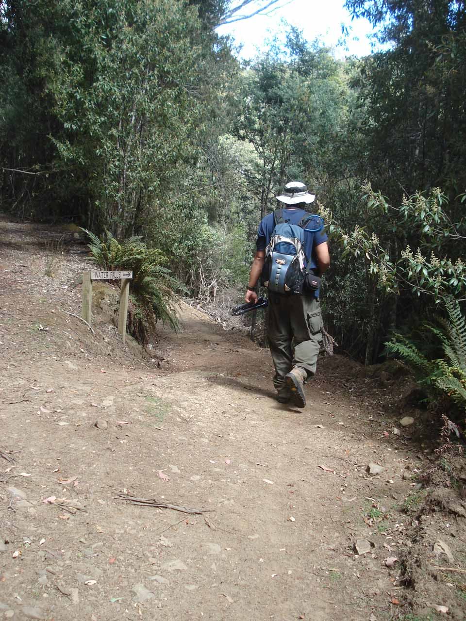 That's me following the shallower path descending from the 4wd path