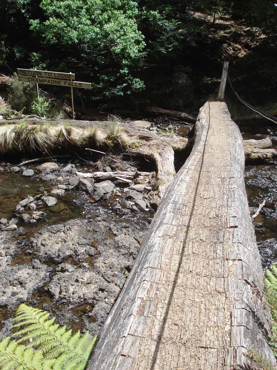 The log bridge fronting Bridal Veil Falls