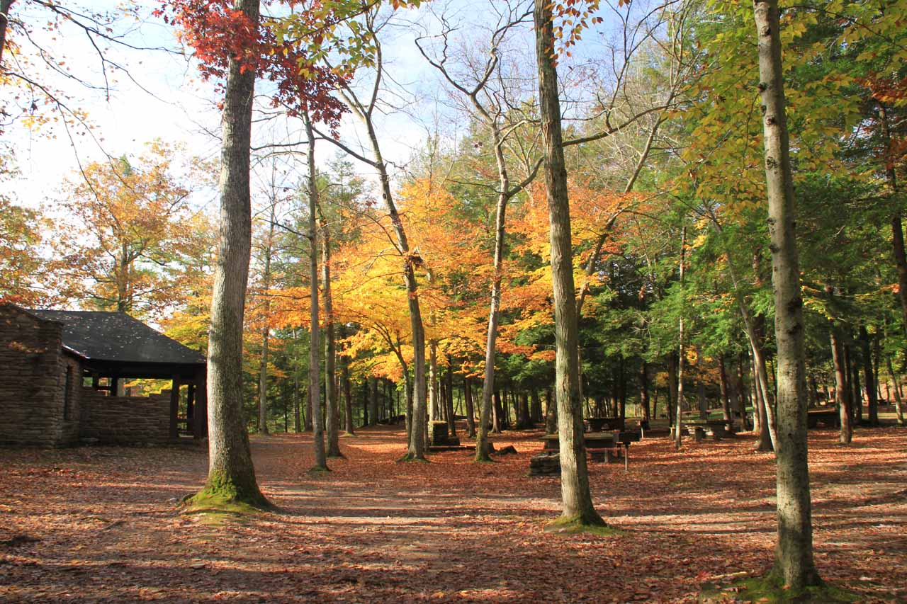 The familiar picnic area but this time with gorgeous Autumn colors