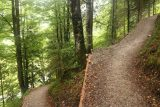 Leutaschklamm_104_06272018 - Going up the switchbacks leading to the suspension bridge over the Leutaschklamm