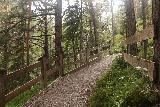Leutaschklamm_120_06272018 - Passing by this fenced area on the Goblin Loop Trail en route to the Leutaschklamm Gorge's upper reaches