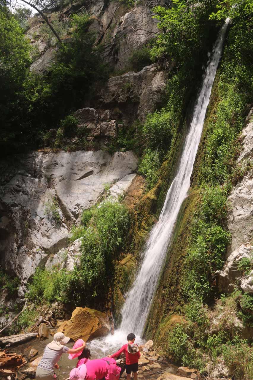 Soldier Creek Falls (Lewis Falls)