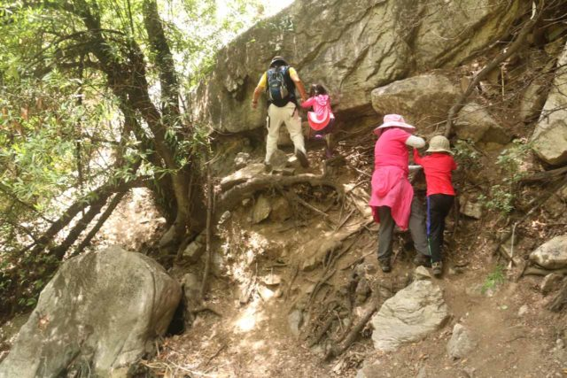 Lewis_Falls_17_142_06102017 - The family having to negotiate some of the trickier parts of the scramble as we were close to Soldier Creek Falls or Lewis Falls