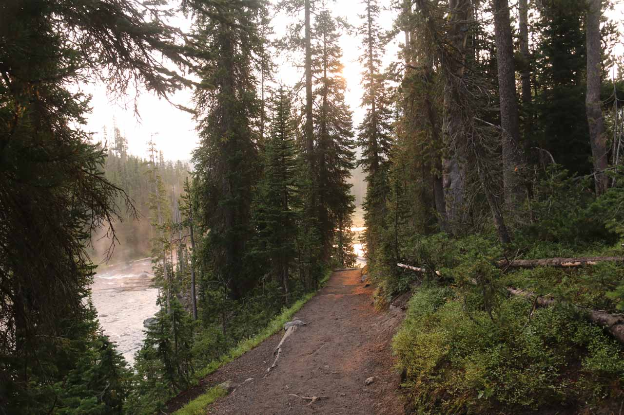 Looking back at the seemingly new Lewis Falls Trail
