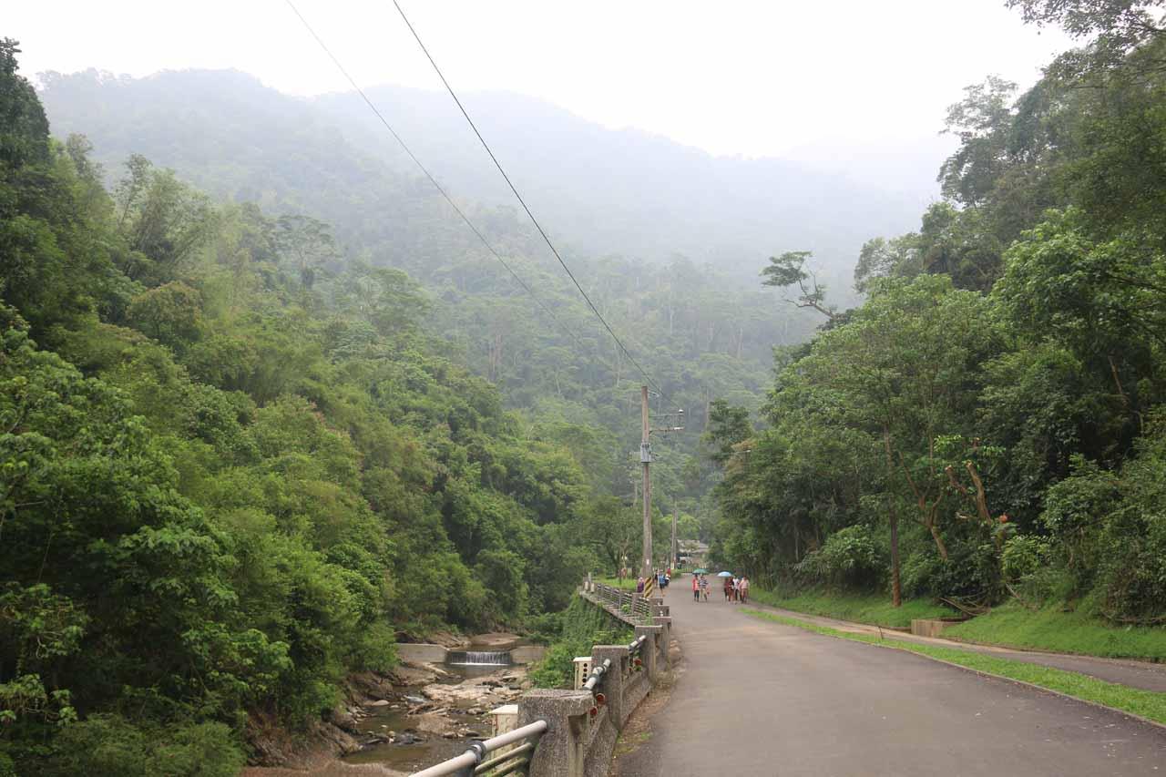 Walking on the road alongside the Niujiaowan Stream