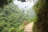 Liangshan_Waterfall_050_10282016 - The Liangshan Waterfall Trail rounding a bend on a ledge perched high above some lush jungle scenery