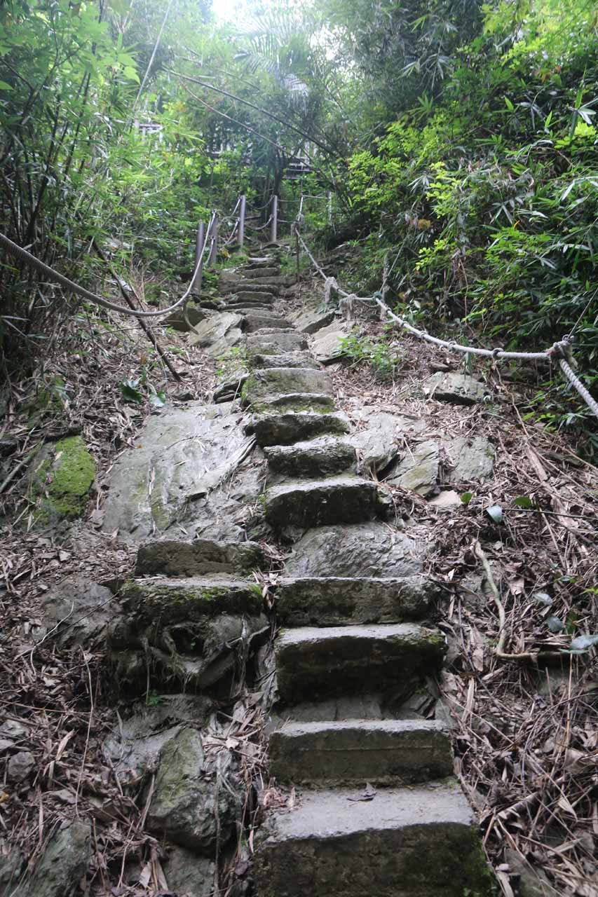 The steep steps going back up to the main trail from the second waterfall