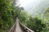 Liangshan_Waterfall_125_10282016 - After having our fill of the Liangshan Waterfalls, it was time to hike back down amidst the steamy jungle scenery again