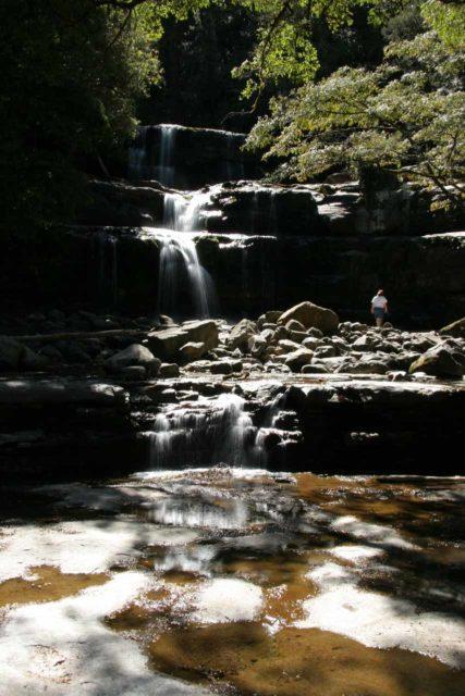 Liffey_Falls_034_11242006 - My first look at Liffey Falls back in November 2006