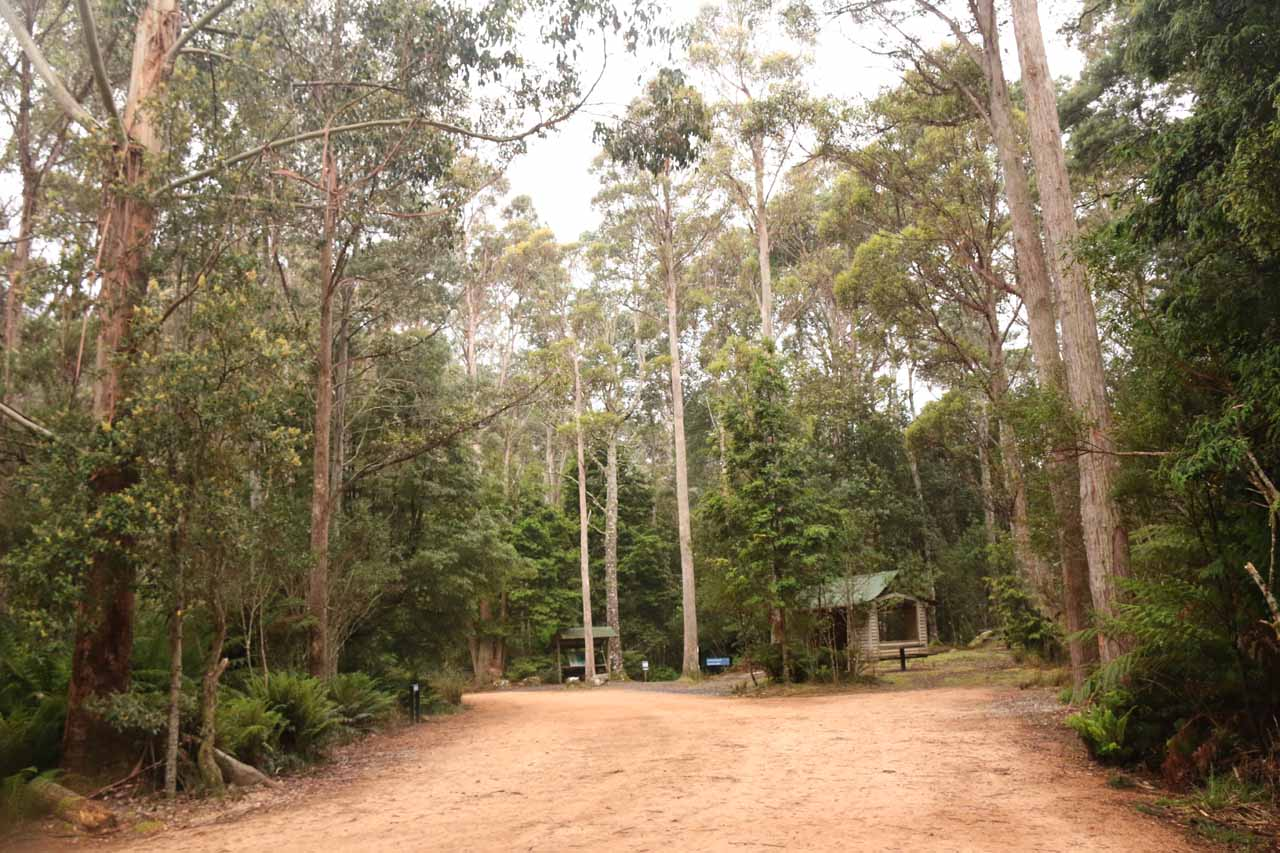 The upper car park for the Liffey Falls Reserve