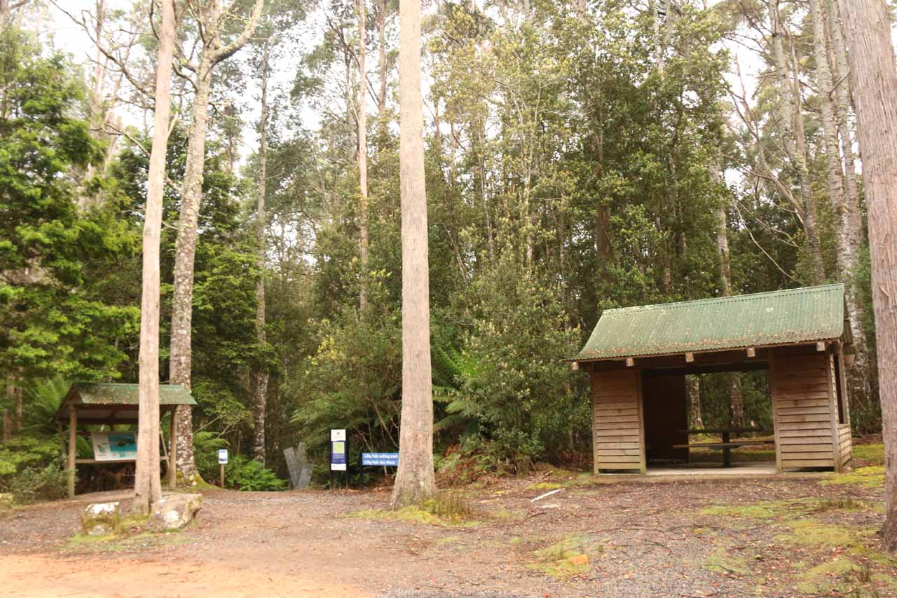The trailhead at the upper car park for Liffey Falls