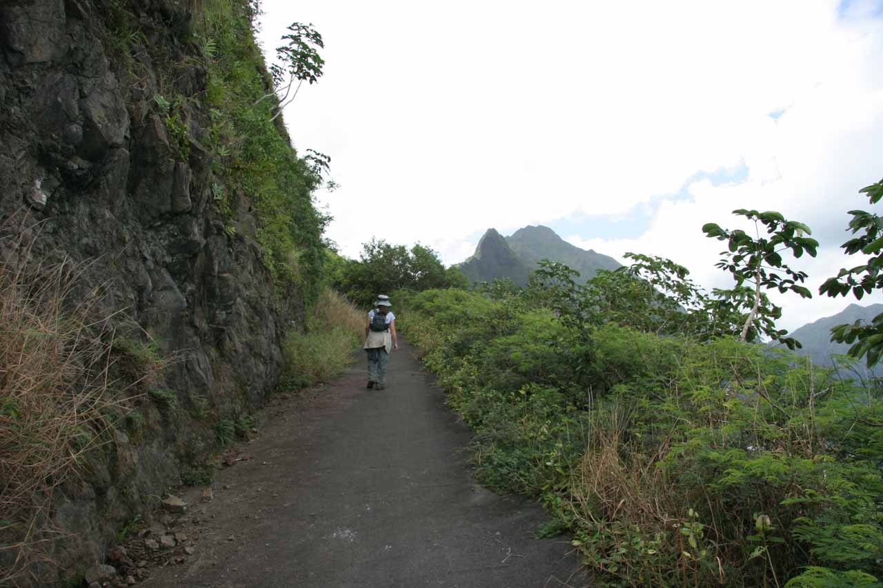 Walking the Old Pali Highway