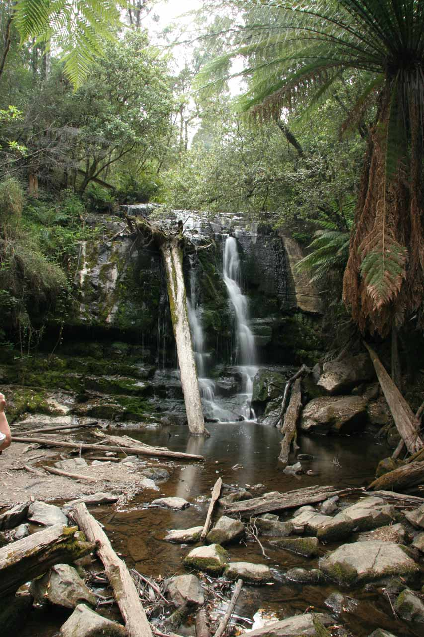 The Lower Lilydale Falls