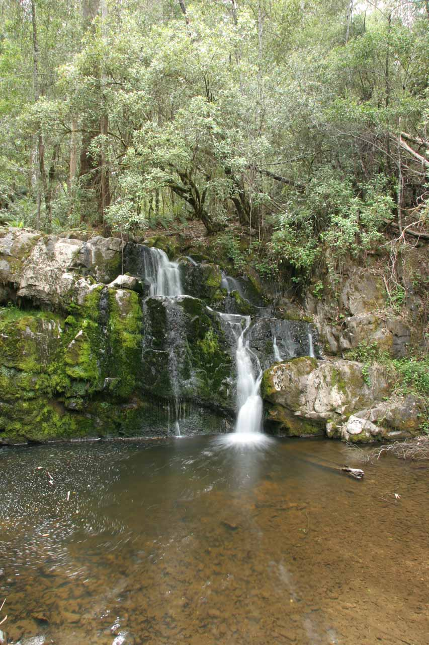 Another look at the Upper Lilydale Falls