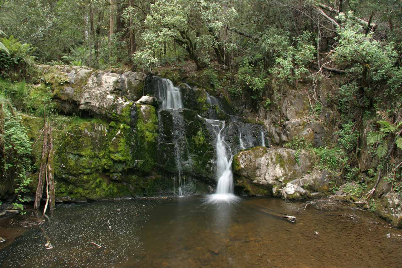 This was the small but serene and pretty Upper Lilydale Falls at the end of the short track