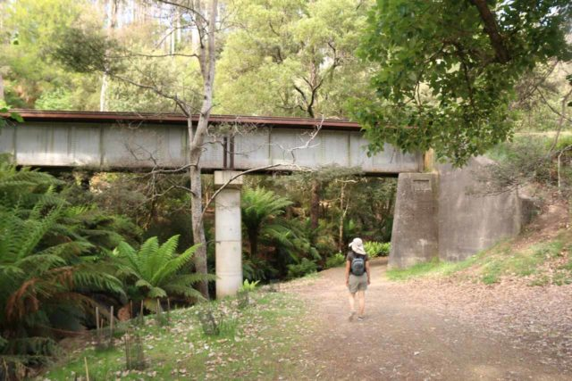 Lilydale_Falls_17_006_11232017 - Julie about to follow the southern banks of the Second River as the track curved and passed beneath this railway bridge