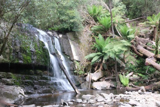 Lilydale_Falls_17_029_11232017 - Lilydale Falls - the First Falls