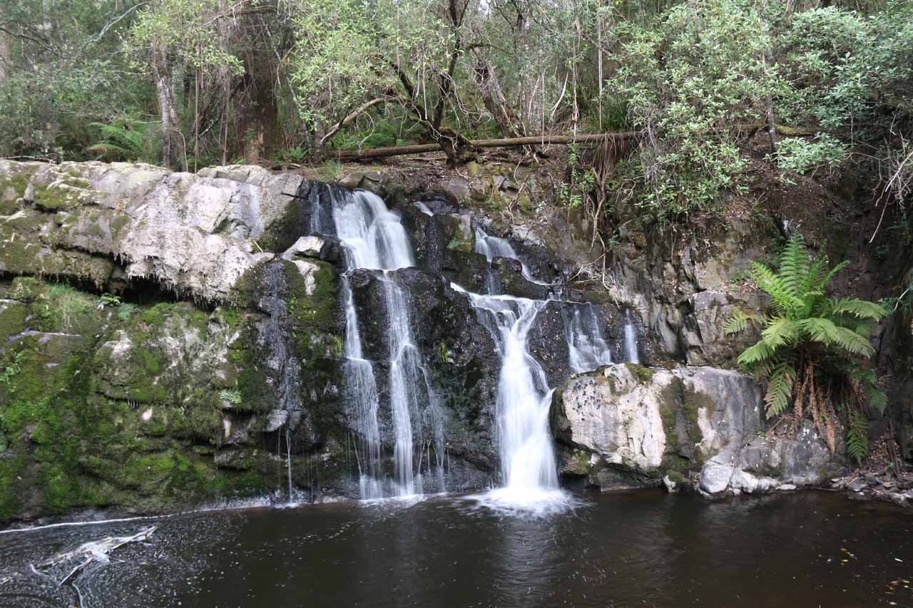 This was the small but serene and pretty Upper Lilydale Falls at the end of the short track from the Lilydale Falls Park