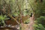 Lilydale_Falls_17_057_11232017 - Julie heading back along the Second River after having had her fill of the Lilydale Falls
